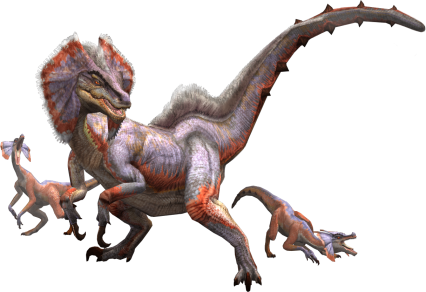 5 Great Jaggi