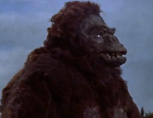 Kong a